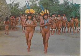 """Brasil Nativo - Dança Ritual """"Yamaricumâ Executado Pelas Mulheres Suiás E Trumai No Alto Xingú Parque Nacional. - Asien"""