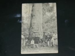 LEVIER / ARDT Pontarlier  1910 /  VUE  METIER BUCHERON    ..  EDITEUR - France