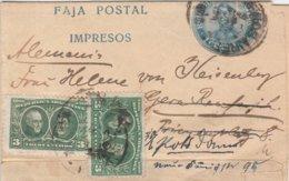 Argentine Entier Postal Bande De Journal Pour L'Allemagne 1910 - Ganzsachen