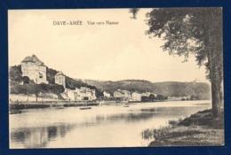 Dave-Amée ( Namur). Vue Vers Namur. Tramway. Bateau De Touristes Sur La Meuse - Namur