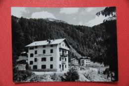 Bolzano O Trento Madonna Di Campiglio Pensione Rododendro NV - Altre Città