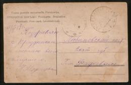 Russia 1919 Pc Civil War, Russko Kraska - Lyubimovsky Post - Covers & Documents
