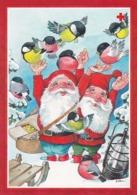 Postal Stationery - Birds - Bullfinches - Elves Feeding Birds - Red Cross 1997 - Suomi Finland - Postage Paid - Finlandia