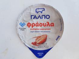 Greece Yogurt Top 2019 - Koffiemelk-bekertjes