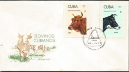 V) 1973 CARIBBEAN, CUBAN CATTLE'S, RACES, CREOLE,  HOLSTEIN ,WITH SLOGAN CANCELATION IN BLACK, FDC - Cuba