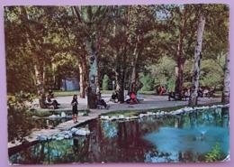 ANKARA - TURKEY - Kugulu Park - Parc Of Swans -  Vg - Turchia