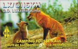 QSL Card Amateur Radio Station Grand Duché Luxembourg Camping Fuusse Kaul Heiderscheid Vos Fox - Radio Amateur