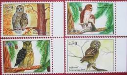 Tajikistan  2019  Owls  Eulen  4 V   Perfor.   MNH - Tadjikistan