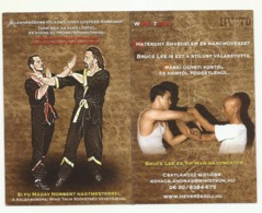 Hungary, Wing Tsun Kung-Fu Ad With Bruce Lee And Yip Man, 2014. - Kalenders