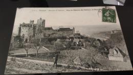 CPA - ENV DE SARLAT -  Vue De L'entrée Du Château De Beynac - Sarlat La Caneda