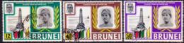 BRUNEI 1969 SG 169-71 Compl.set Used - Brunei (...-1984)