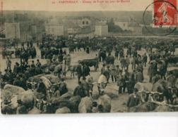 79 -  Parthenay : Champ De Foire Un Jour De Marché - Parthenay