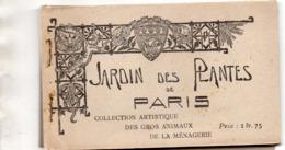 PARIS - Jardin Des Plantes - Carnet 20 Cartes - Parks, Gardens