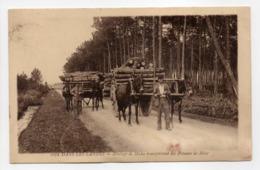 - CPA LANDES (40) - Attelage De Mules Transportant Des Poteaux De Mine 1930 (belle Animation) - Photo Gautreau 1072 - - Francia