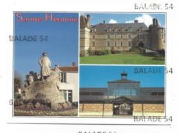 CPM - SAINTE - HERMINE (85) Statue De Clémenceau, Le Château Et La Halle - Sainte Hermine
