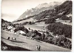 Ramaz - Village  . Col De Tamié - Savoie.  Montagne De L'Orizan Et Col Du Haut Four. Vaches  Edit Cim 8844 - France