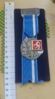 Medaille :  Jubilaums Schiessen Remigen 1872 -1972 -  Association - Duitsland