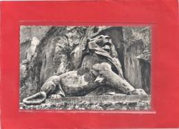 Cpsm Format Cpa . 544. BELFORT . LE LION . CARTE AFFR AU VERSO . 2 SCANES - Belfort – Le Lion