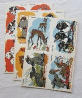 Bel Ensemble 3 Planches Entières Chromos Découpis Illustrateur Ray Lambert - Bébés Animaux - 12 Images - Animaux
