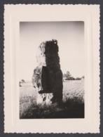 Photo Ancienne C.1950 Menhir De Pierre-Fritte à Congy (Marne) Marais De Saint Gond - 10,5 X 8 Cm. - Luoghi