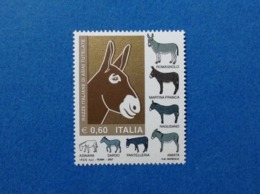 2007 ITALIA RAZZE ITALIANE DI ASINI TUTELATE FRANCOBOLLO NUOVO STAMP NEW MNH** - 1946-.. République