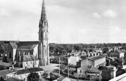 85. CPSM. LA MOTHE ACHARD.  Panorama De La Ville. - La Mothe Achard