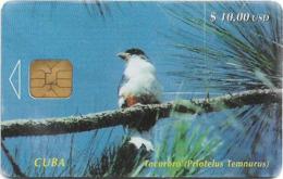Cuba - Etecsa - Tocororo Bird (Priotelus Temnurus) - 01.1997, 40.000ex, 10$, Used - Kuba