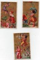 CHROMO Dorée Chocolat Saintoin Orléans Fille Filles Fleurs (3 Chromos) - Autres