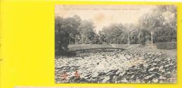 COCHINCHINE SAÏGON Pont Rustique Au Jardin Botanique (Dieulefils) Viet-Nam - Viêt-Nam