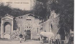 FIRENZE-COSTUMI DEL CONTADO-BELLA CARTOLINA ANIMATA NON VIAGGIATA ANNO 1910-1920 - Firenze (Florence)