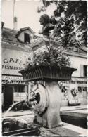 D01 - FERNEY VOLTAIRE-FONTAINE VOLTAIRE-Café Restaurant-Galeries Voltaire-CPSM Dentelée Petit Format En Noir Et Blanc - Ferney-Voltaire