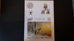 Buzin - Souvenir A4: 80 Ans De Louvetisme 1916-1996 - Souvenir Cards