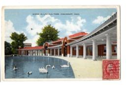 CINCINNATI Lincoln Park (francobollo Non Dentellato) - Cincinnati