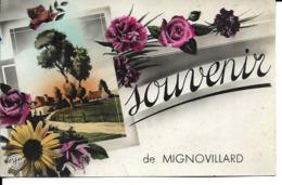 """39 - Mignonvillard - Carte Fantaisie """"Souvenir De..."""" - France"""