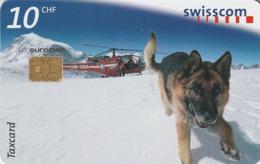 SUIZA. Perros - Dogs. Marc. 7/98. SUI-CP-38B. (103) - Perros