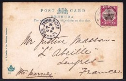 BERMUDA - GRU GRU PALMS - SEND FROM HAMILTON TO LANGRES ( FRANCE ) In 1908 ! - Bermuda