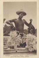 Océanie - Polynésie Française - Hikueru Tiveru - Archipel Des Tuamotu - Corail - Polynésie Française