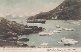 Amérique - Canada - Terre-Neuve Et Labrador - St John's - An Unwelcome Visitor - Bâteaux - Postmarked 1904 - St. John's