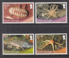 2013 South Georgia Marine Life Complete Set Of 4 MNH - Ross Dependency (Nieuw-Zeeland)