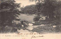 Dep 44 , Cpa NANTES , 8 , Le Jardin Des Plantes  (2619) - Nantes
