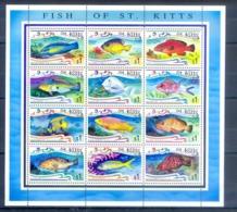 J169- St. Kitts Fish 1997. - Fische