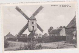 Laakdal  EINDHOUT   De Windmolen  Le Moulin à Vent - Laakdal