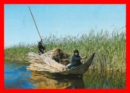 2 CPSM/gf NASIRIYAH (Iraq)   Southern Marshes, La Récolte Des Joncs...J921 - Israele