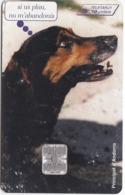 TC087 TÉLÉCARTE A PUCE - ANDORRE 50 UNITÉS - APAPMA - STA - CAMPANYA CONTRA ELS ABANDONAMENTS D'ANIMALS - Andorra