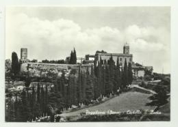POGGIBONSI - CASTELLO  DI BADIA NV FG - Siena