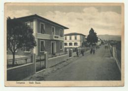 SCARPERIA - VIALE DANTE 1942 VIAGGIATA  FG - Firenze (Florence)
