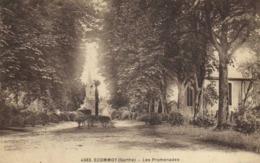 ECOMMOY (Sarthe) Les Promenades RV Timbre 40 Ambulant - Ecommoy