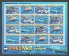 W377 2009 MALDIVES WWF FISH & MARINE LIFE MELON-HEADED WHALE 1SH MNH - Other