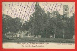 756 - BELGIQUE - RUINES DE L'ABBAYE DE CAMBRON-CASTEAU - La Tour Et Le Grand Escalier - DOS NON DIVISE - Brugelette