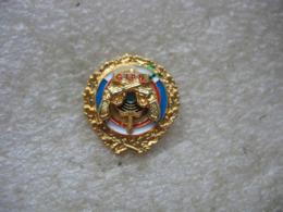 Pin's Double Moule Du GIPN (Groupes D'Intervention De La Police Nationale) - Police